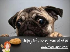 Enjoy every MORSEL