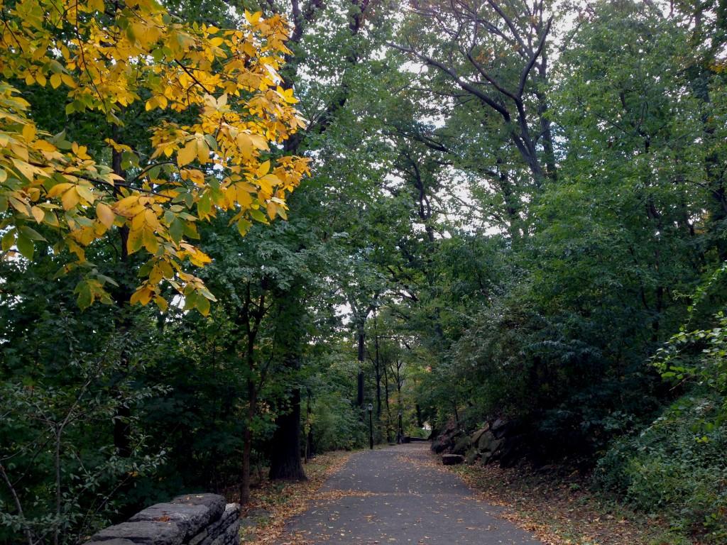 Yellow Path Road